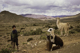 Bolivia, somewhere. Young herder and amorous llamas.